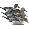 Picture of **FREE SHIPPING** Standard Pintail 6pk by Higdon Decoys