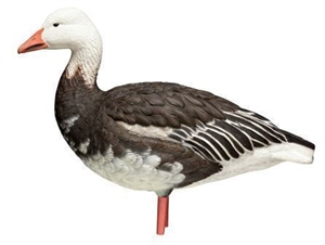 Picture of **FREE SHIPPING** AXP Full Body BLUE Snow Goose Decoys 10pk by Avian X Decoys