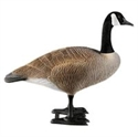 Picture of Bigfoot Sentry Goose