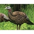 Picture of **FREE SHIPPING** LCD Breeder Turkey Hen Decoy by Avian X Decoys