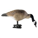 Picture of Feeding Canada Goose Yard Ornament