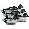 Picture of **FREE SHIPPING** Standard Goldeneye Duck Decoys 6 pk  (Foam Filled) by Higdon Decoys