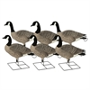 Picture of **FREE SHIPPING** ProGrade XD Canada Goose Decoys by Greenhead Gear