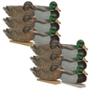 Picture of **FREE SHIPPING** GHG Essential Mallard Duck Decoys 1dz. by Greenhead Gear