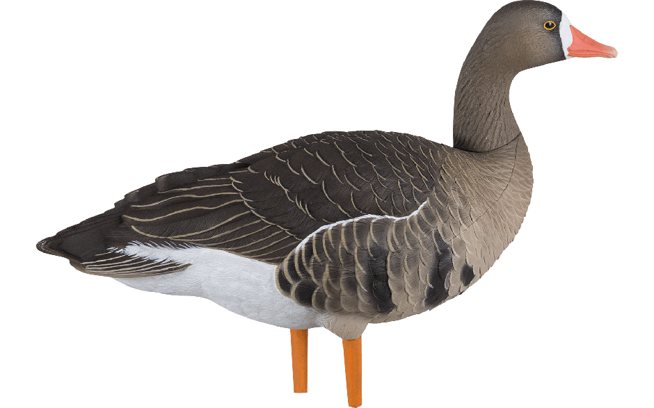 Goose Decoys For Sale >> Prairiewind Decoys. Speck Full Bodies